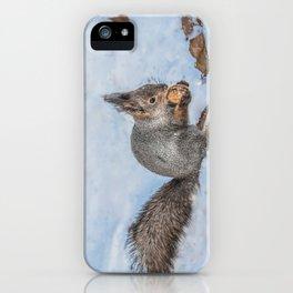 Hard nut to crack iPhone Case