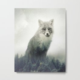 Fox, Forest Animal, Woodlands, Wilderness Metal Print