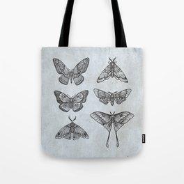 Moths & Butterflies II Tote Bag