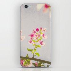 Dreamy Bougainvilleas iPhone & iPod Skin