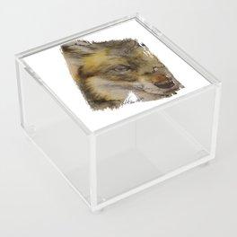 Fox Acrylic Box