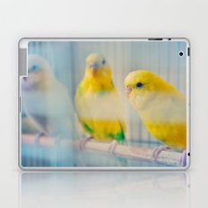 Budgies Laptop & iPad Skin