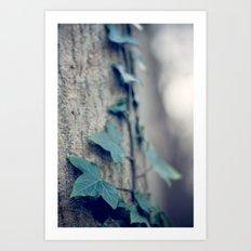 Sleeping Ivy Art Print