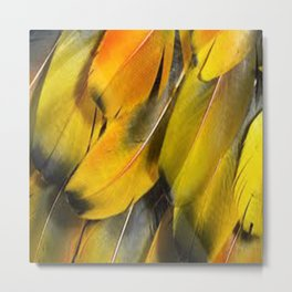 yellow feather Metal Print