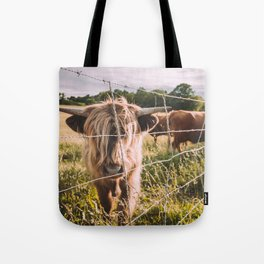 Highland Cows in the Sun Tote Bag