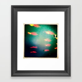 Lighting Fish Framed Art Print