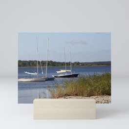Sailboats moored in front of a natural beach.  Mini Art Print