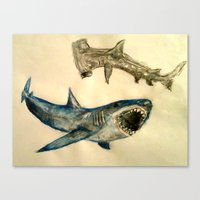 sharks Canvas Prints featuring Sharks by Jen Hallbrown