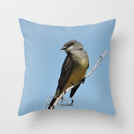 A Cassin's Kingbird Scopes the Skies for Flies Throw Pillow