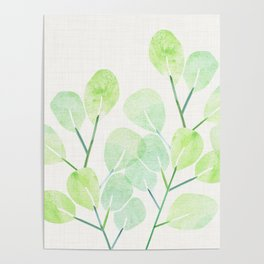 Jade Plant Watercolor Poster