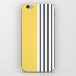 Coogee Stripe iPhone Skin