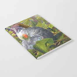 Forty Winks Notebook