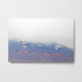 Flying in the Fog: Snow Geese Metal Print