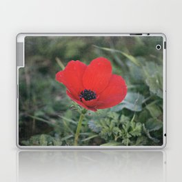 Wild Anemone Laptop & iPad Skin