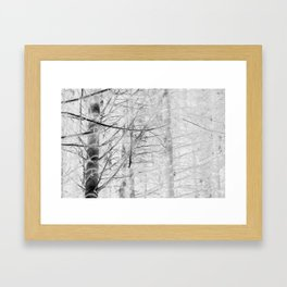 x-ray branch Framed Art Print