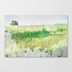 natura 1 Canvas Print
