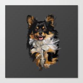 Long Hair Chihuahua On the Run Canvas Print