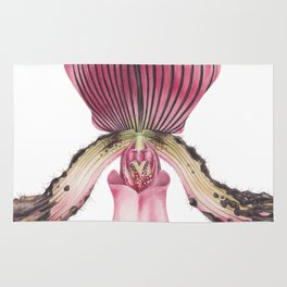 Flower Painting   Watercolour   PAPHIOPEDILUM ACMODONTUM - Pointed Tooth Orchid By Magda Opoka Rug