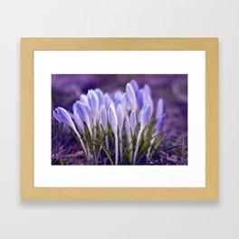 Ultra Violet Sound Framed Art Print