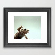 :: frog :: Framed Art Print