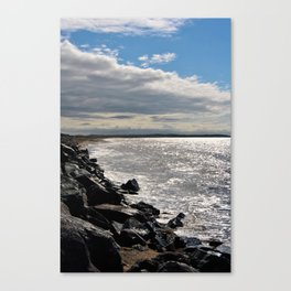 Big Island Canvas Print