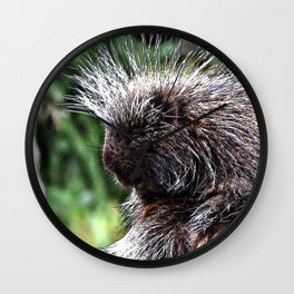 toony New World porcupines ( Erethizontidae) Wall Clock