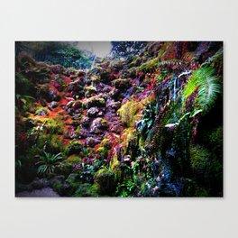 Landscape Photography Rainbow Rock Garden Vibrant Color Home Decor Print Canvas Print