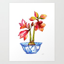 Red Amaryllis in Chinoiserie Art Print