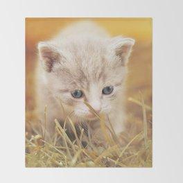 Kitten | Chaton Throw Blanket