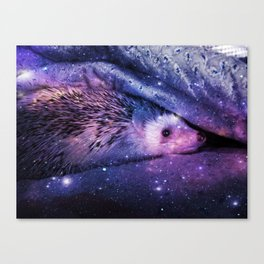 Hedgehog Sofi Canvas Print