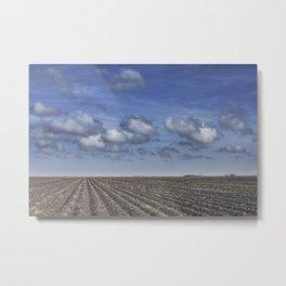 Farm Furrows in a Texas Field Metal Print