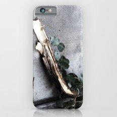 Branch iPhone 6 Slim Case