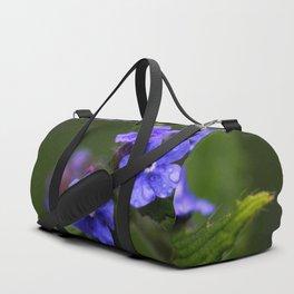 Omphalodes verna - JUSTART © Duffle Bag
