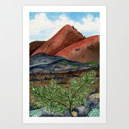 Ascension Island Parsley Fern Art Print