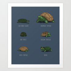 Know Your Turtles Art Print