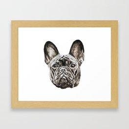 French Bulldog dog Framed Art Print
