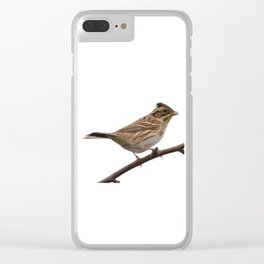 Rustic Bunting Bird Vector Isolated Clear iPhone Case