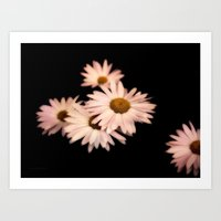 daisies Art Prints featuring Daisies by Christine Belanger