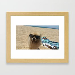 Dog At Beach Framed Art Print