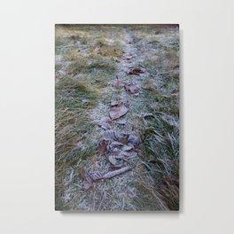 Winter Trail Leaves Metal Print