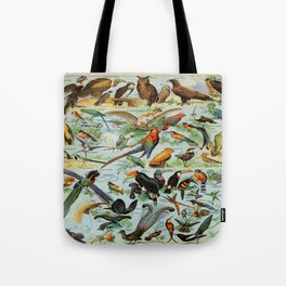 Colourful Birds Vintage Scientific Illustration French Language Encyclopedia Lithographs Educational Tote Bag