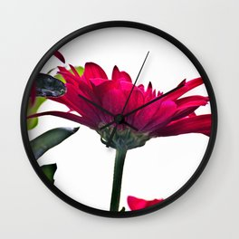 Red Chrysanthemum Flowers Wall Clock