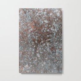 Old wall with coral and white fungus Metal Print