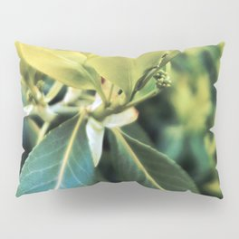 Fortune's Spindle Pillow Sham