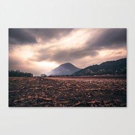 Wastelands Canvas Print