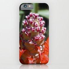 Succulent Blossom I iPhone 6s Slim Case