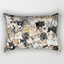 Catmina 2017 - SEVEN Rectangular Pillow