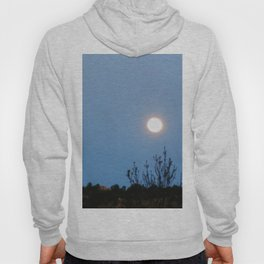 Rocks and Moons Hoody