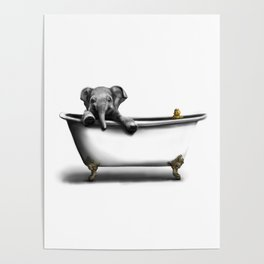 Elephant in Bath Poster