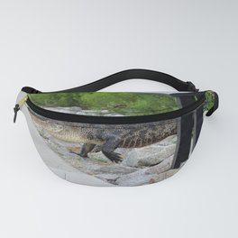 Alligator Coming Up For A Stroll Fanny Pack